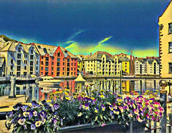 Flowers in Alesund