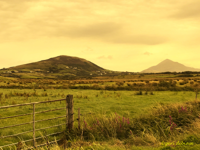 With Croagh Patrick in the Distance