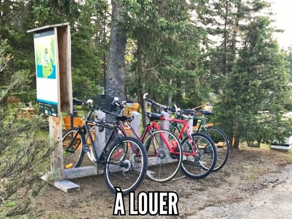 Bicyclettes à louer