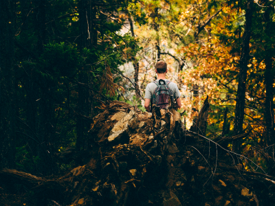 Conheça 4 trilhas para explorar Fernando de Noronha