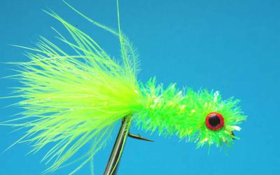 Sparkle grub fly