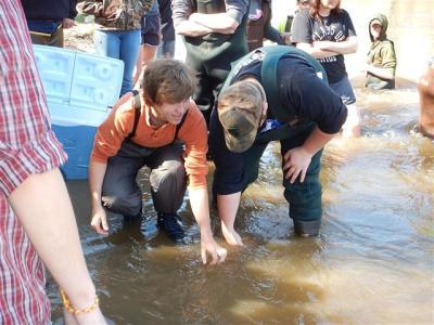 Salmon release