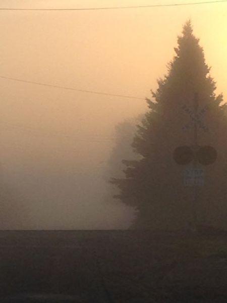 Foggy Morning at the Railroad Tracks