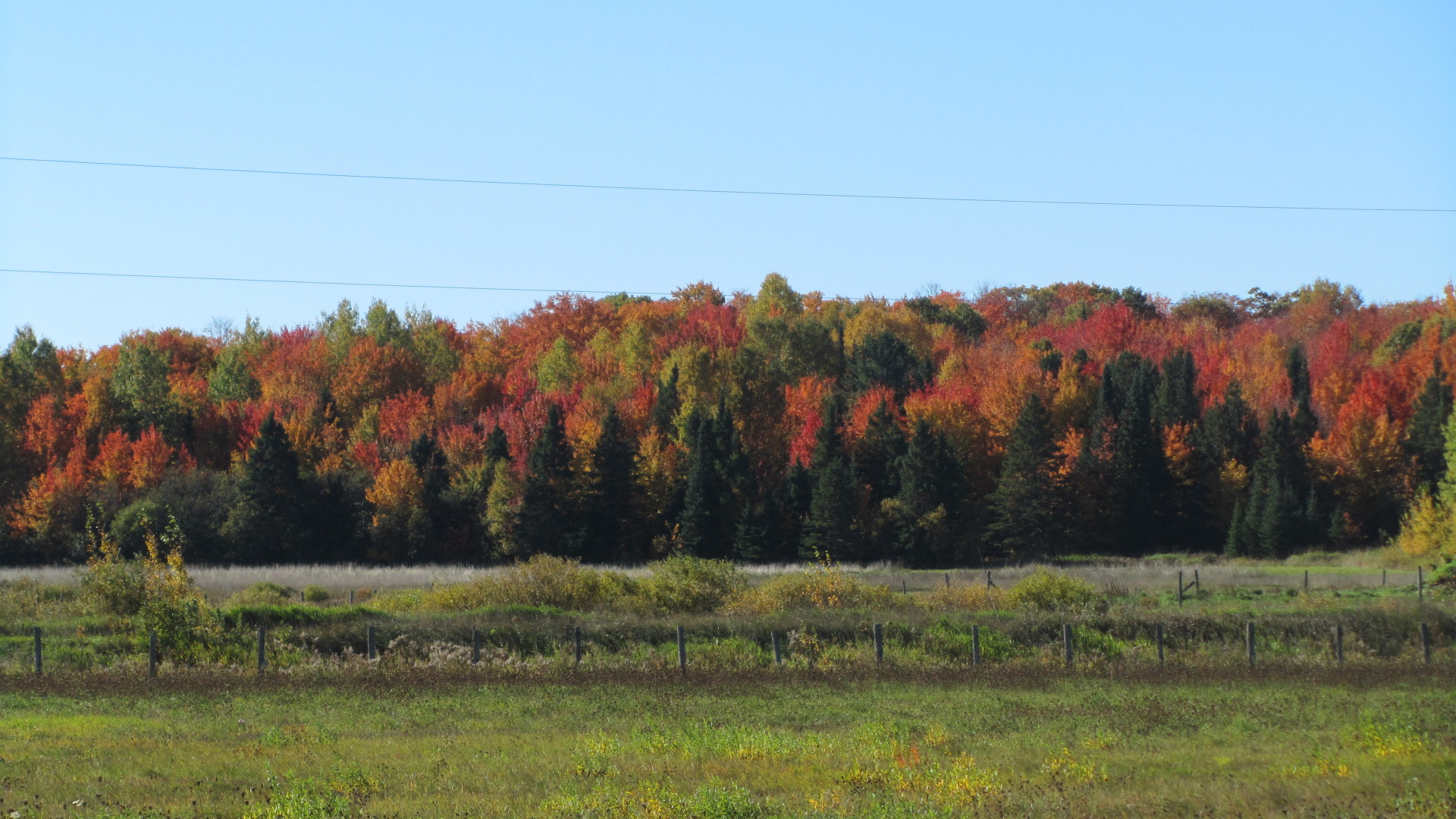 Another Beautiful Fall Day in Dafter Township