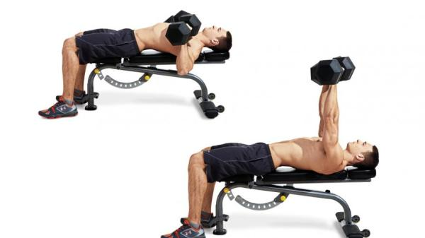 Dumbbell Bench Press