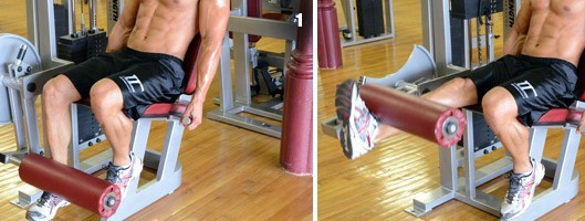 Unilateral or Single Leg Extension