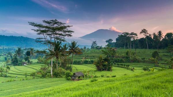 5-Star Luxury Bali Yoga & Wellness Retreat March 24th-30th, 2018
