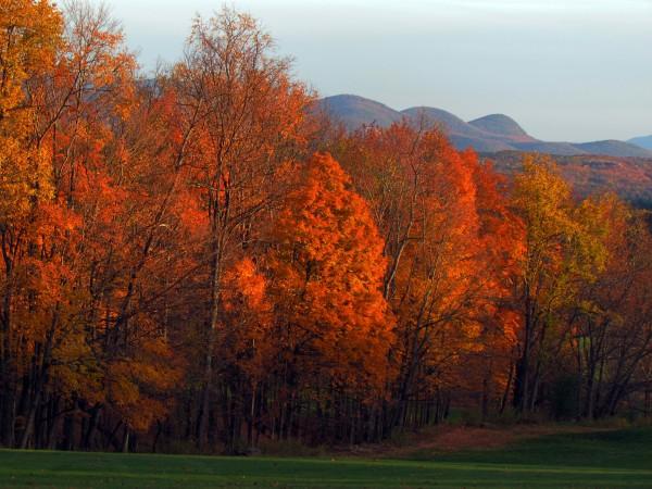 Milestone Golf Club Vermont