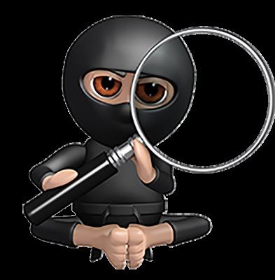 Magnify Ninja