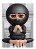Thinking Ninja