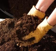 Compost - $105.00/cubic yard