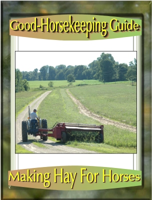 Making Hay For Horses