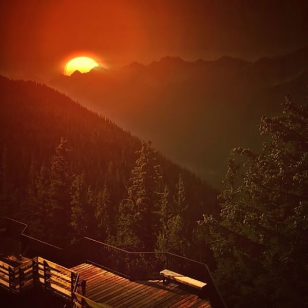 Mahogany Woods (type)