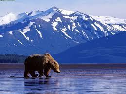 Learning in Alaska