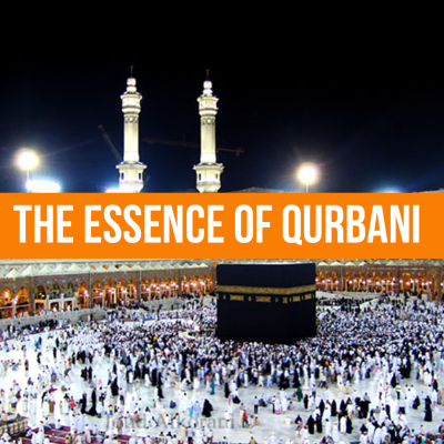 The essence of Qurbani - Thought Provoking