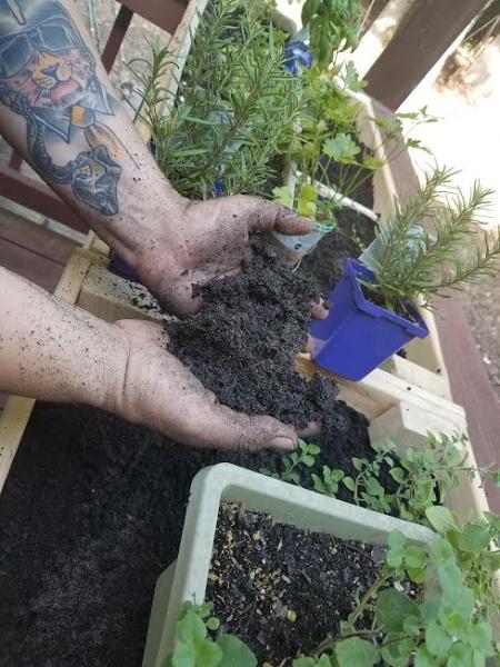RTBT #2:  Fresh Herb Garden