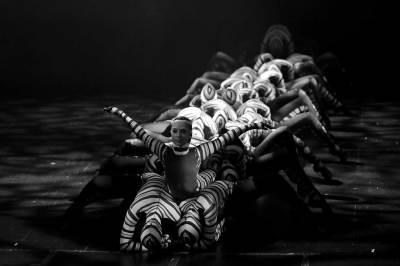 Contemporary dancers creating caterpillar shape