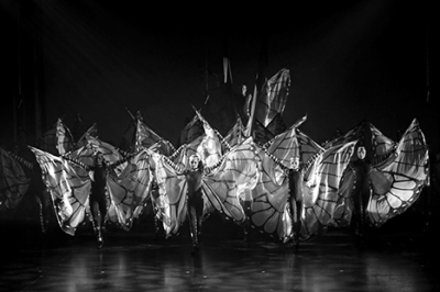 Contemporary dancers in butterfly wings