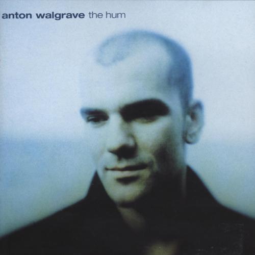Anton Walgrave