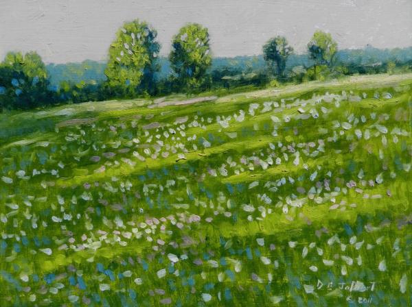Hobbs Rd Springtime