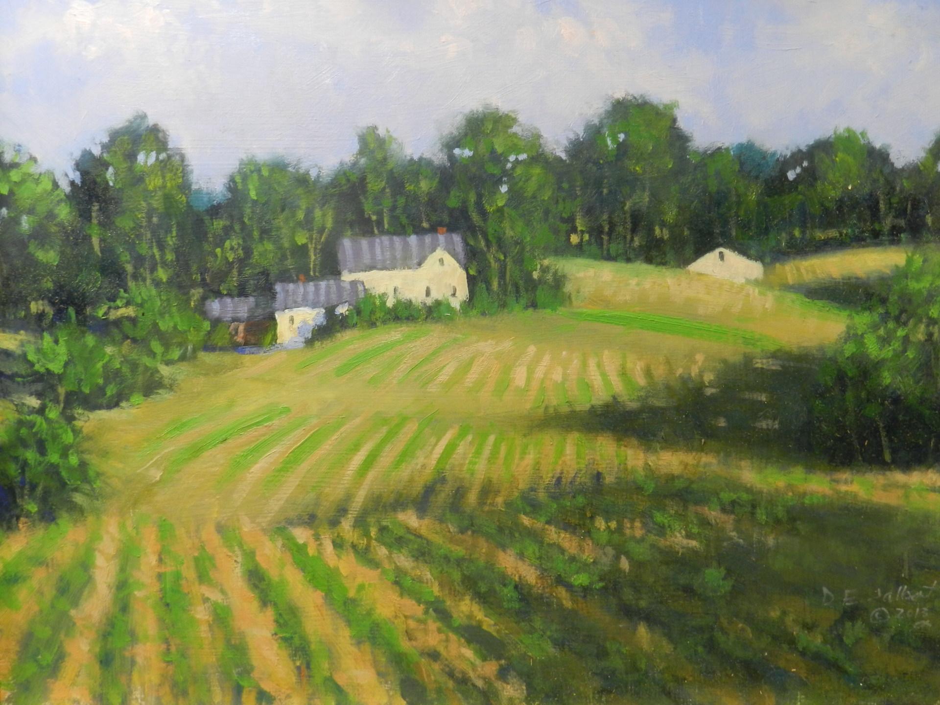 Bakie Farm East Kingston