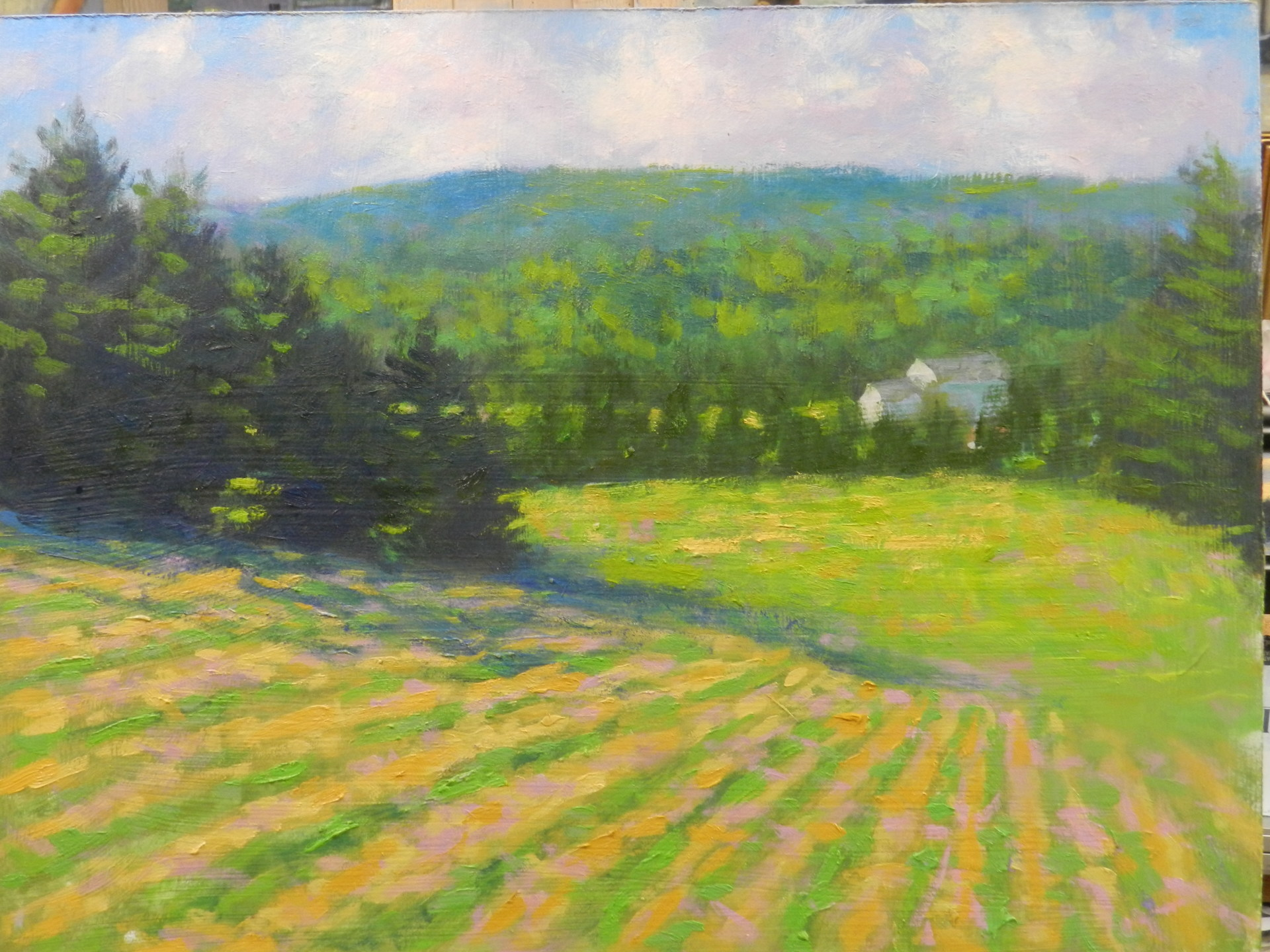 Harvey Farm looking South