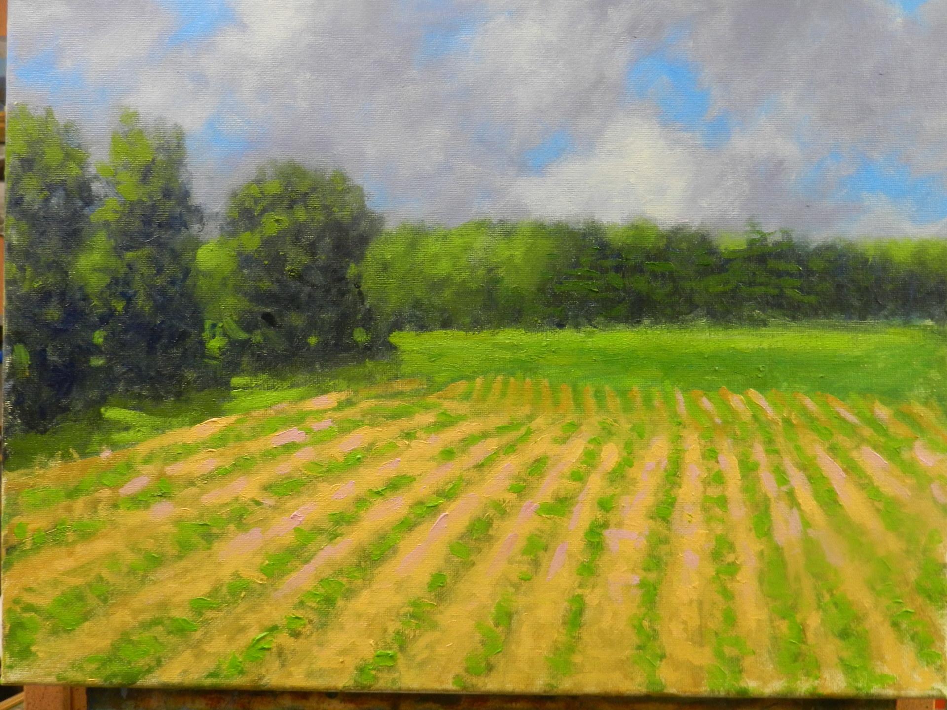 Stratham Fields