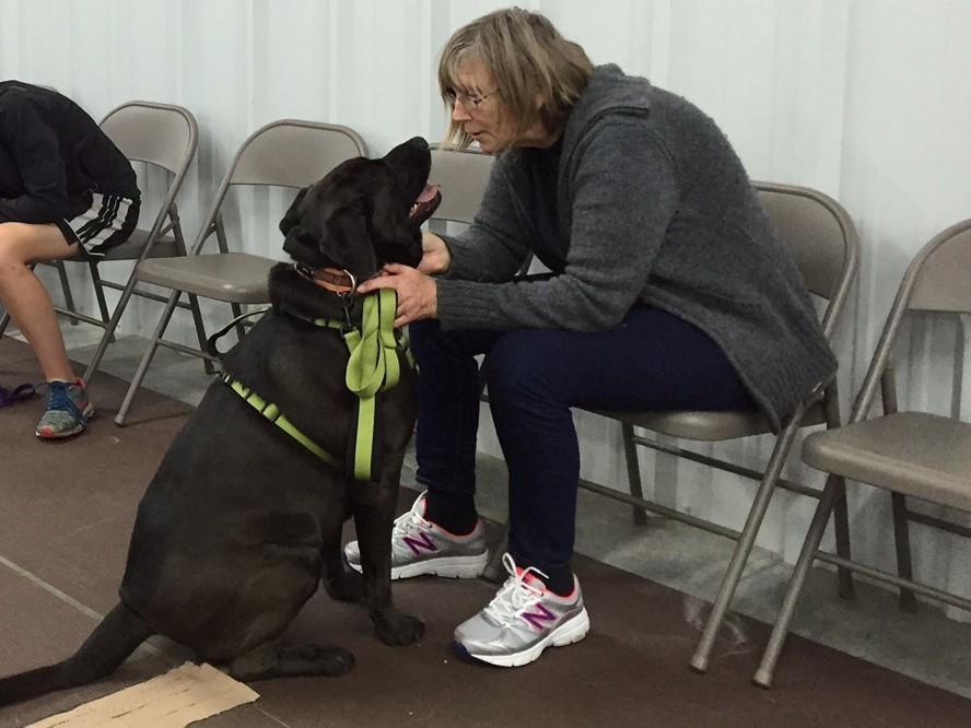 beginner dog training class 1