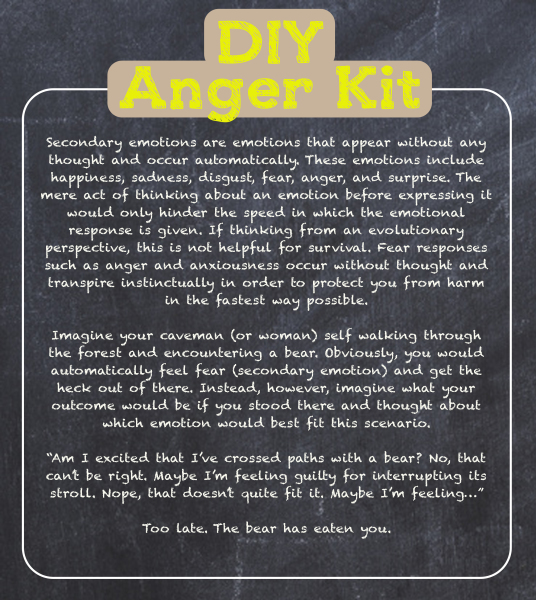 DIY Anger Kit, Empathic Counselling Centre, Juliann Rasanayagam, Anger management workbook, self help book