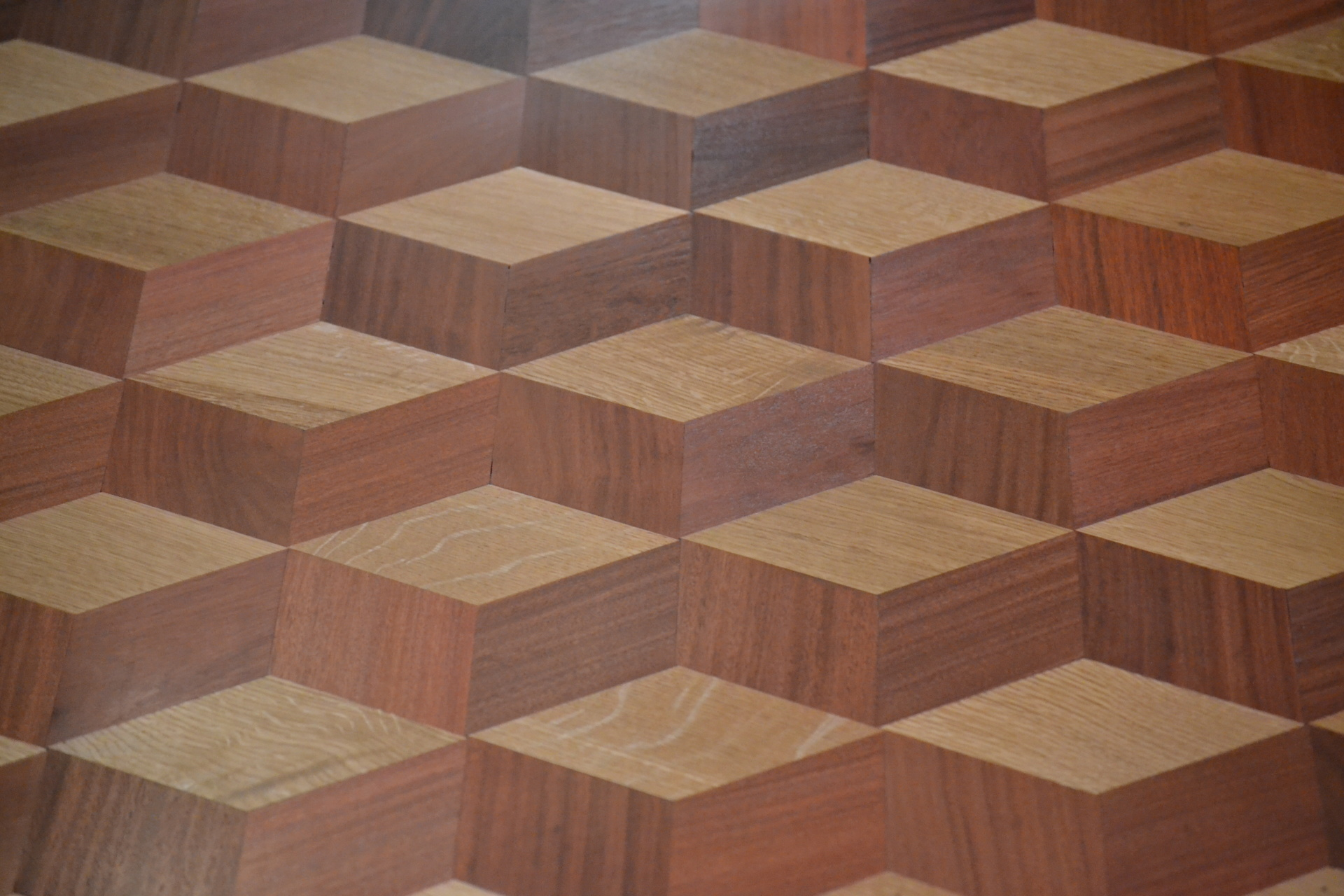 Exotic Floors & Designs