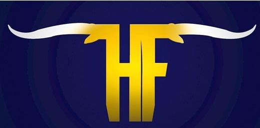 Hamshire Fannett Longhorns