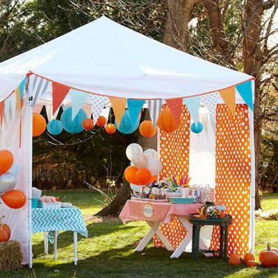 Custom Decorated Theme Tents