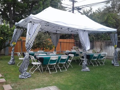 Custom Themed Canopy Curtains