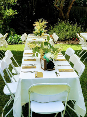 Plan a Theme Party by Choosing Rented Chairs and Tables