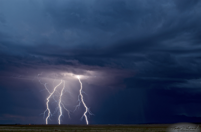 Three separate cloud-to-ground lightning channels are caught illuminated just south of Moriarty, New Mexico on August 9, 2013.