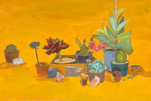 Large Cacti and Rocks Yellow Ground