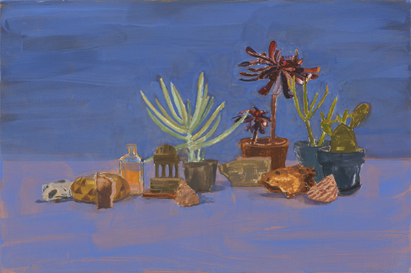 Large Blue Succulents and Rocks