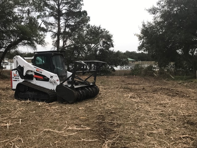 Charleston Land Clearing Forestry Mulching Underbrushing