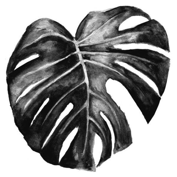 Black Philadendron Art Print by George Sand Studio