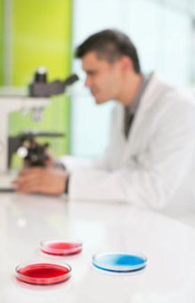 Scientist analyzing with microscope