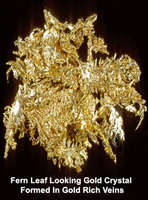 Gold Cluster