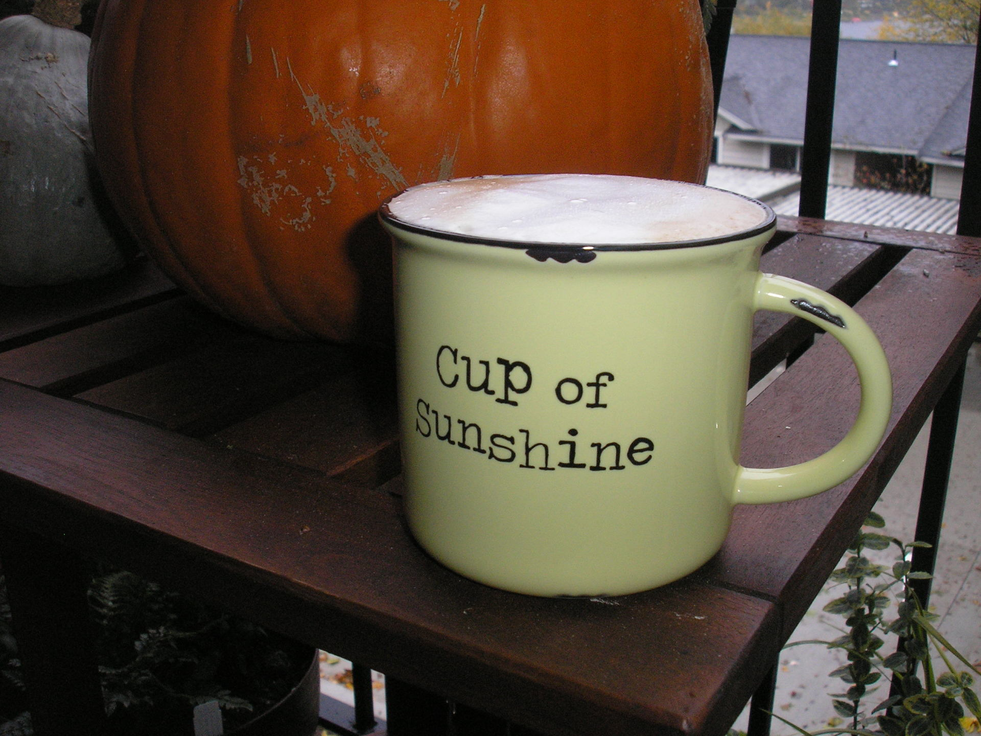 Cup of Sunshine on a grey morning...