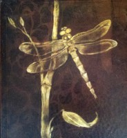 Dragonflies - eBook available on Amazon