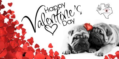 The TBC Pups Sends Their Love