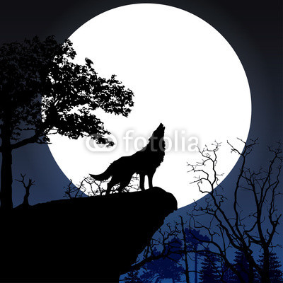 Full Moon Releasing and Celebration with Guided Meditation 10/19/17 7:00pm-9:00pm