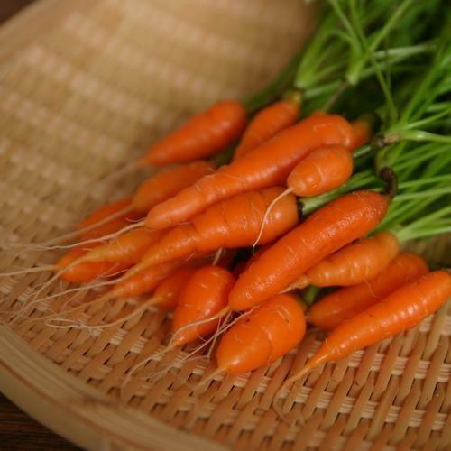 SWEETHEART BABY CARROTS