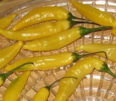 AJI LEMON PEPPER