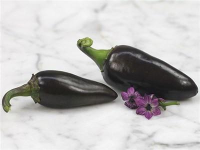 HUNGARIAN BLACK CHILLI PEPPER