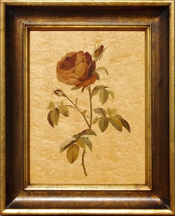 D316 Red Rose