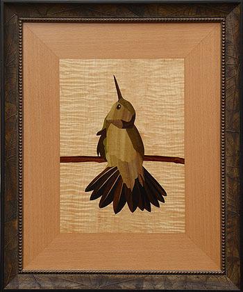 D317 Fanned Tail Hummingbird